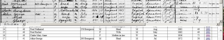 Mary Ann Clarke 1911 census